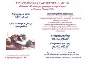 Месячник по кастрации и стерилизации кошек и собак с 01 по 31 мая 2021 года